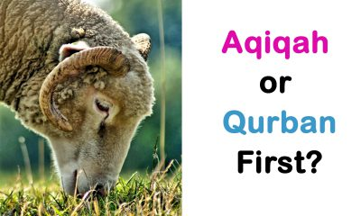 Aqiqah or Qurban First?
